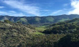 reservoir canyon, claiborne & churchill, hike, Trails of SLO Wine Country
